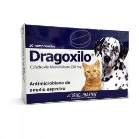 Dragoxilo 220 Mg 10 Comprimidos